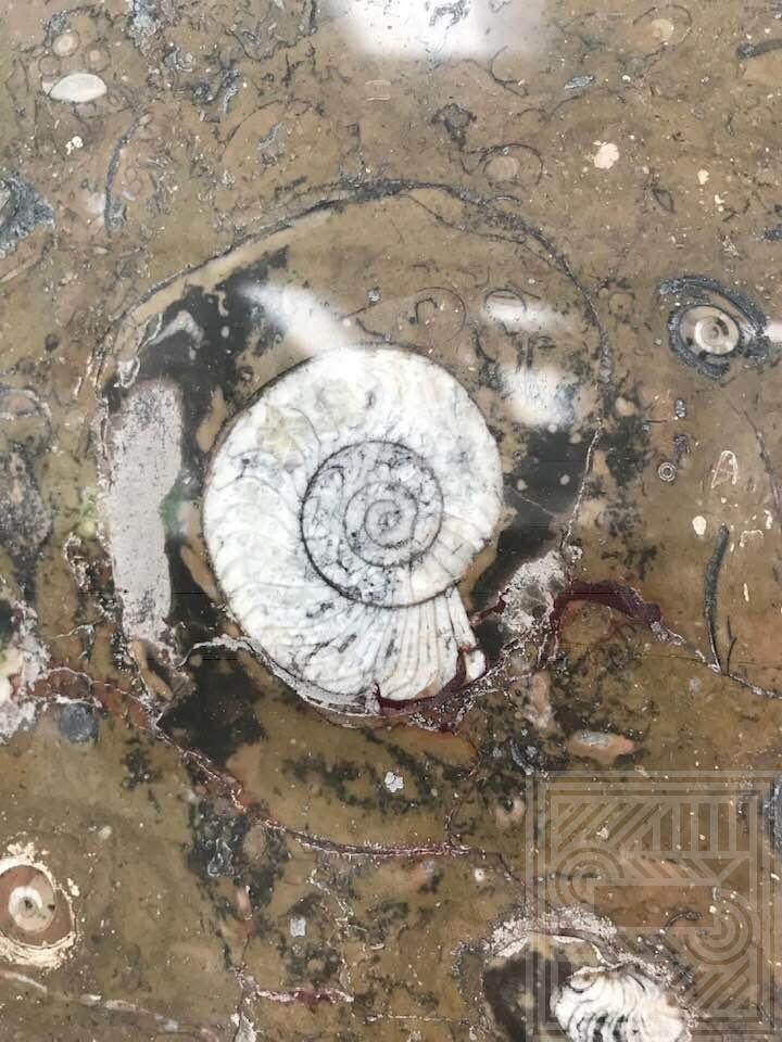Плитка гранитная tile-granite - unnamedS4OFCF4X